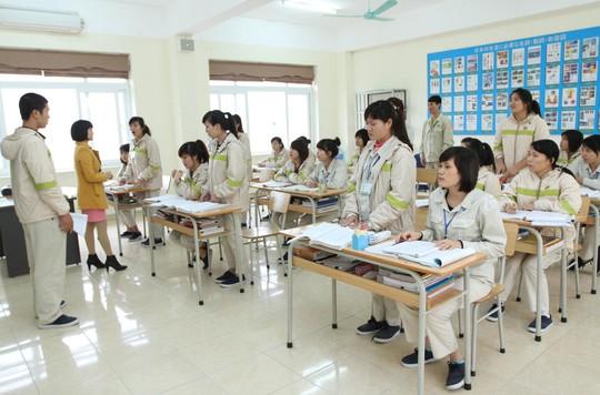 Điều dưỡng, hộ lý sang Nhật làm việc nhận lương 33 triệu đồng/tháng - Ảnh 1.