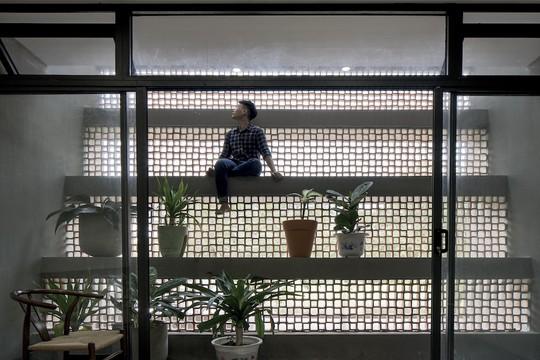 Ngôi nhà ở ngoại ô TP HCM thách thức mọi côn trùng - Ảnh 11.
