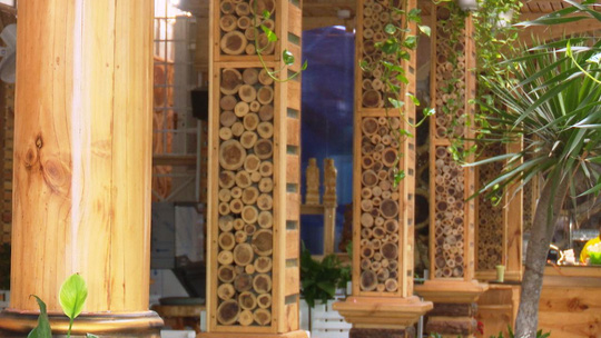 Ông chủ bỏ 6 tỉ đồng mở quán cà phê giá rẻ, tràn ngập sắc hoa - Ảnh 6.