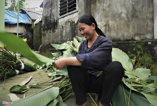 Người vùng trồng lá dong lớn nhất Hà Tĩnh trúng mùa - Ảnh 6.