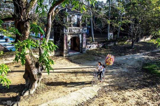 Tết ở làng hoa giấy Thanh Tiên - Ảnh 4.