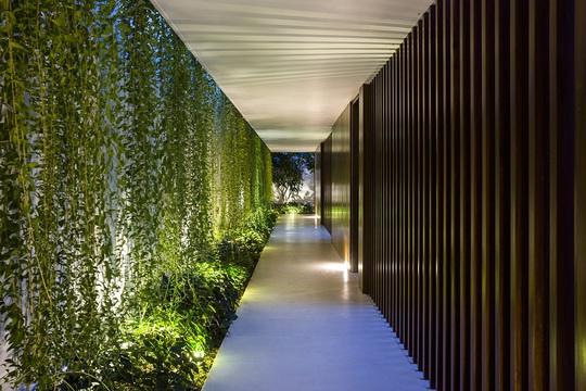 Nhà hộc kéo được bao phủ bởi 60% cây xanh và mặt nước - Ảnh 12.