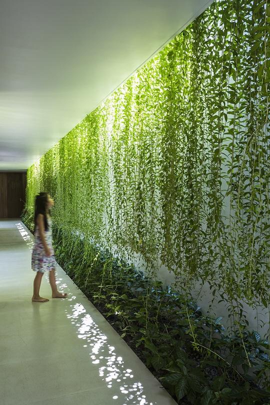 Nhà hộc kéo được bao phủ bởi 60% cây xanh và mặt nước - Ảnh 6.
