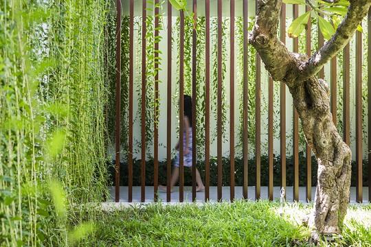 Nhà hộc kéo được bao phủ bởi 60% cây xanh và mặt nước - Ảnh 7.