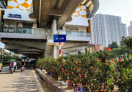Cận cảnh nhà ga đường sắt Cát Linh - Hà Đông thành chợ cây cảnh - Ảnh 5.