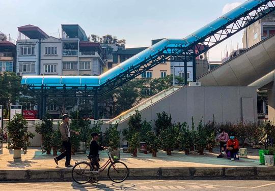 Cận cảnh nhà ga đường sắt Cát Linh - Hà Đông thành chợ cây cảnh - Ảnh 10.
