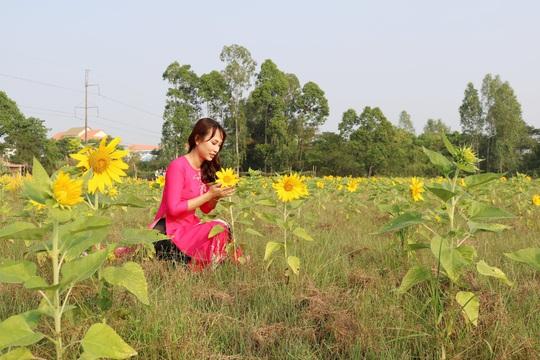 Về Cao Lãnh ngắm cánh đồng hoa rộng hơn 20.000 m2 - Ảnh 6.