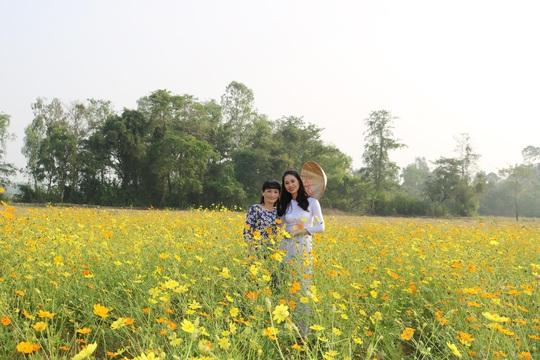 Về Cao Lãnh ngắm cánh đồng hoa rộng hơn 20.000 m2 - Ảnh 4.