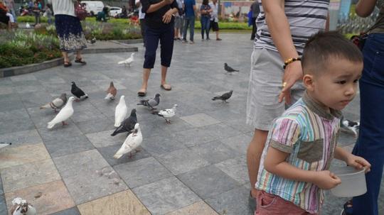 Gần 1.000 chim bồ câu nhuộm màu ở Nhà thờ Đức Bà - Ảnh 5.