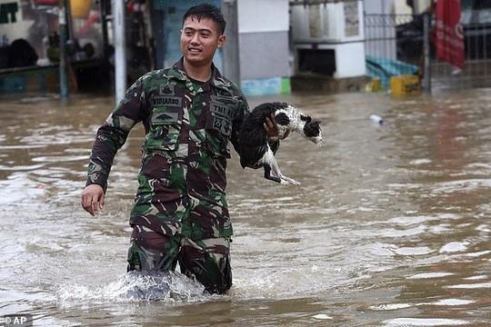 Jakarta: Mưa không bình thường một đêm, 16 người chết - Ảnh 3.