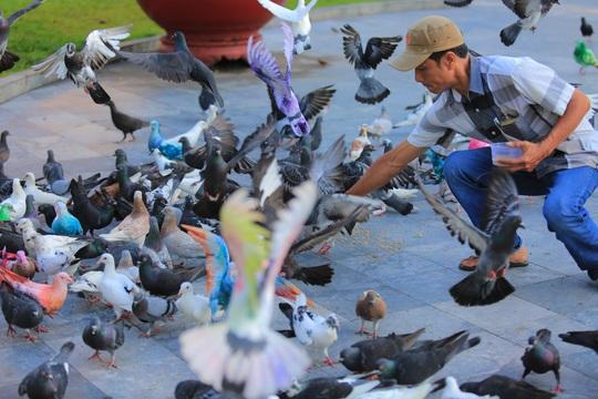Gần 1.000 chim bồ câu nhuộm màu ở Nhà thờ Đức Bà - Ảnh 10.