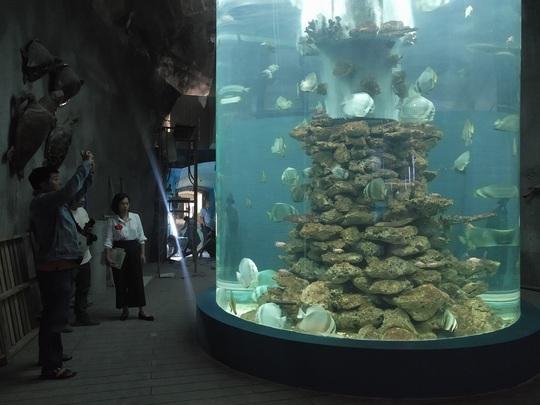 Kho tư liệu khổng lồ về tài nguyên biển Hoàng Sa – Trường Sa - Ảnh 12.