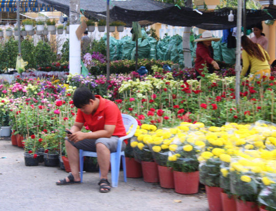 Xin hãy mua hoa, đừng chờ đến trưa 30 Tết! - Ảnh 3.