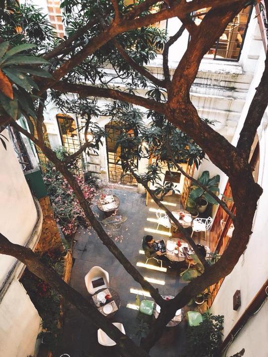 6 quán cà phê tụ tập ngày Tết ở Hà Nội - Ảnh 4.