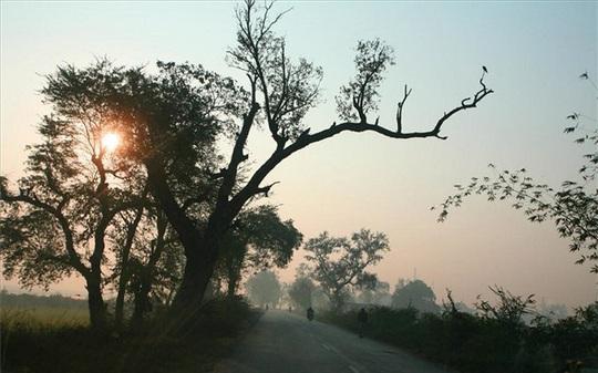Khám phá đất Phật Ấn Độ - Ảnh 8.