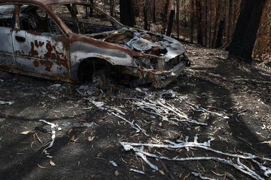 Úc tuyên bố tình trạng khẩn cấp khi cháy rừng đe dọa thủ đô Canberra - Ảnh 2.