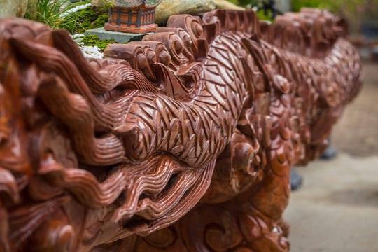 CLIP: Chậu đào Long quyện ngũ hành sơn tiền tỉ trên phố Hà Nội - Ảnh 5.