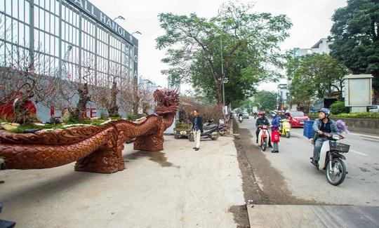 CLIP: Chậu đào Long quyện ngũ hành sơn tiền tỉ trên phố Hà Nội - Ảnh 9.