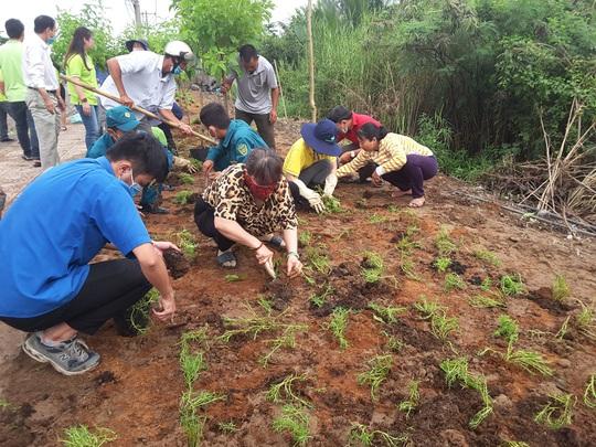 VWS trồng cây xanh và hoa trên đường vào Khu Liên hợp Xử lý chất thải Đa Phước - Ảnh 1.