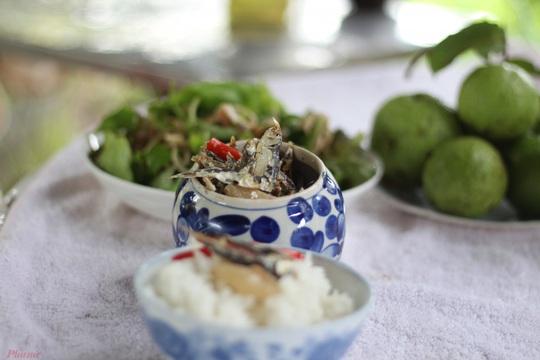 Trời mưa, ăn cá khô kho với cơm nguội - Ảnh 1.