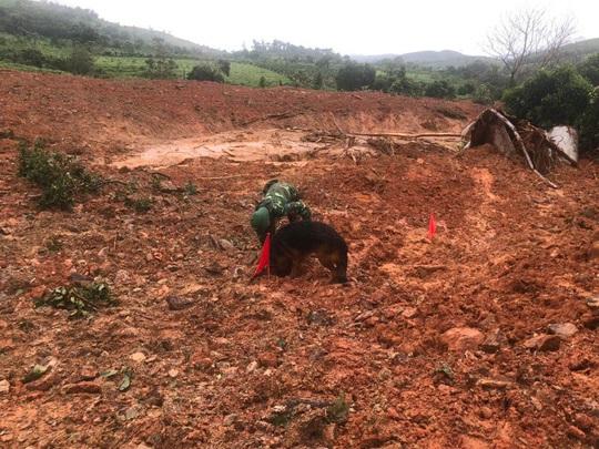 Tìm thấy 3 thi thể cuối cùng vụ 22 cán bộ, chiến sĩ bị sạt lở núi vùi lấp ở Quảng Trị - Ảnh 1.
