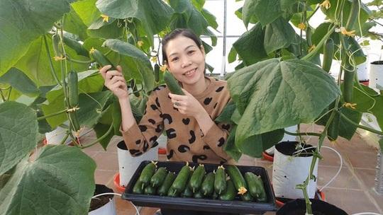 Gia đình trẻ biến sân thượng trống thành 'khu vườn trên mây' - Ảnh 2.