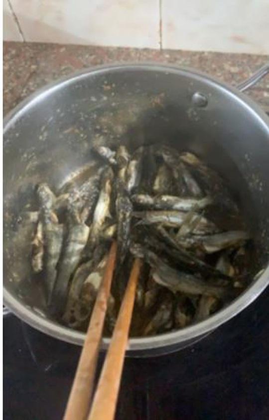 Mùa nước lụt bắt cá ngạnh ở miền Trung quê tôi - Ảnh 3.