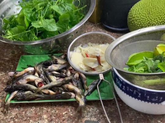 Mùa nước lụt bắt cá ngạnh ở miền Trung quê tôi - Ảnh 4.