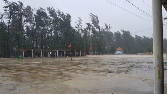 Bão số 9: Thừa Thiên - Huế có gió rất mạnh, cây đổ - Ảnh 2.