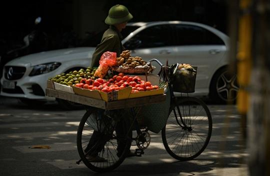 Khoảnh khắc Hà Nội trong mùa đẹp nhất năm - Ảnh 23.