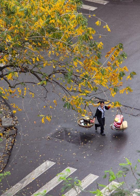 Khoảnh khắc Hà Nội trong mùa đẹp nhất năm - Ảnh 8.