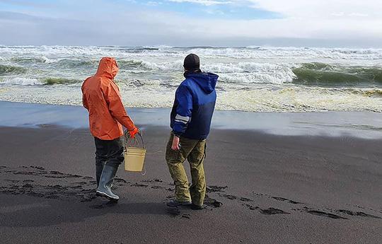 Thảm họa Kamchatka - Nga: Gần như tất cả sự sống dưới đáy biển bị xóa sổ - Ảnh 4.
