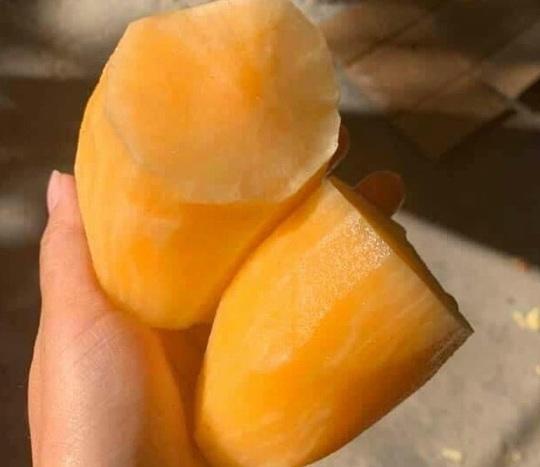 Đặc sản Lào Cai giá rẻ như khoai - Ảnh 1.