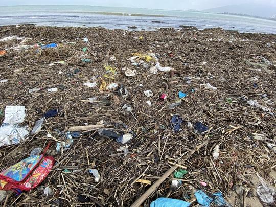 CLIP: Rác tràn ngập bãi biển Đà Nẵng sau bão số 13 - Ảnh 7.