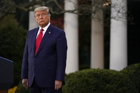 """Luật sư của Tổng thống Trump tố CIA dính líu gian lận phiếu bầu"""" - Ảnh 2."""