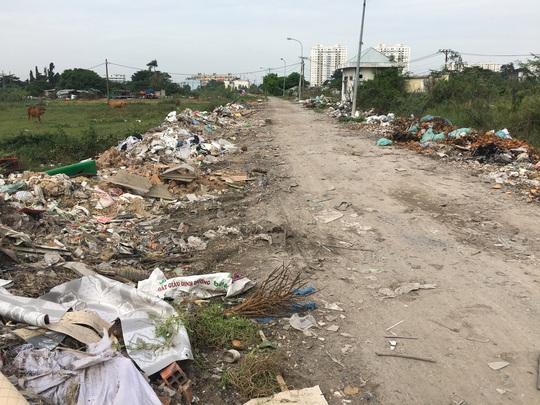 Cận cảnh hàng trăm tấn rác tấn công Khu tái định cư 38 ha ở quận 12 - Ảnh 2.