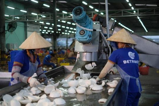 Tổng Lãnh sự Singapore đến tham quan nhà máy Betrimex - Ảnh 3.