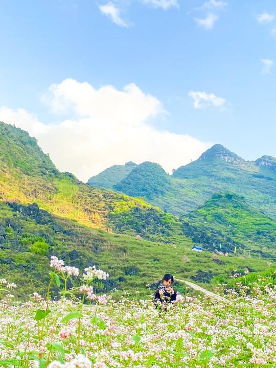 Khám phá Hà Giang mùa tam giác mạch chỉ 1,3 triệu đồng/người - Ảnh 2.