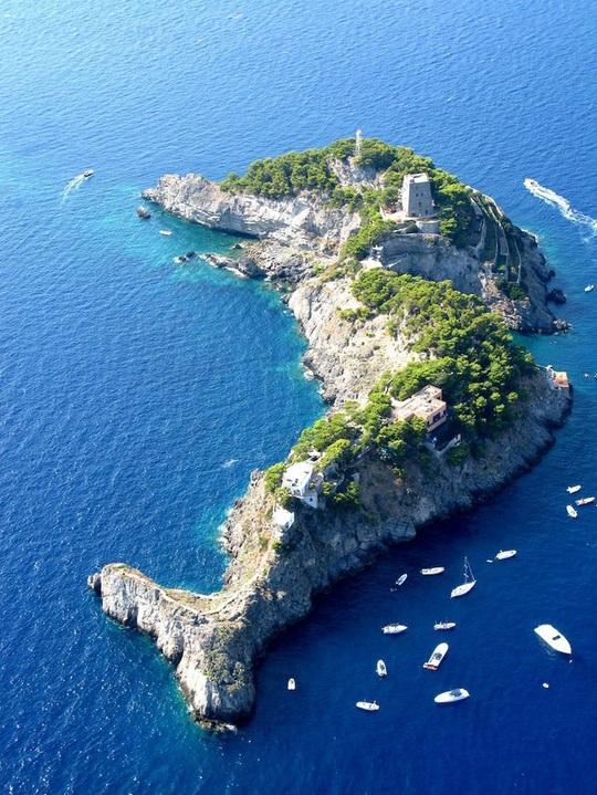 Hòn đảo hình cá heo chỉ cho 12 khách thuê - Ảnh 1.