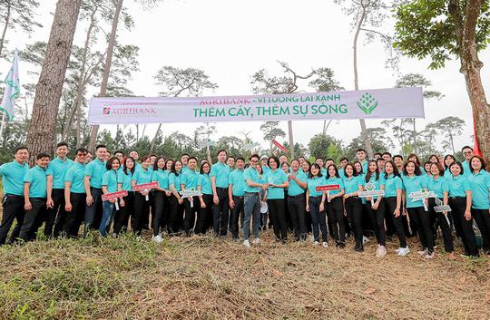 Hành trìnhMột triệu cây xanh, thêm cây thêm sự sống đến với Khu di tích lịch sử K9 Đá Chông – Ba Vì - Ảnh 3.