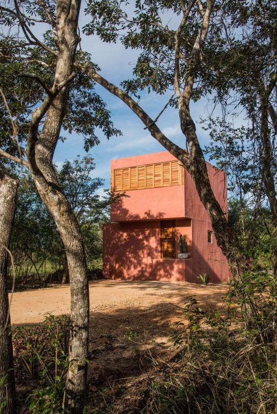 Ngôi nhà hòa mình vào thiên nhiên hoang dã ở Mexico - Ảnh 2.