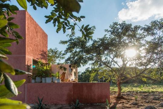 Ngôi nhà hòa mình vào thiên nhiên hoang dã ở Mexico - Ảnh 11.