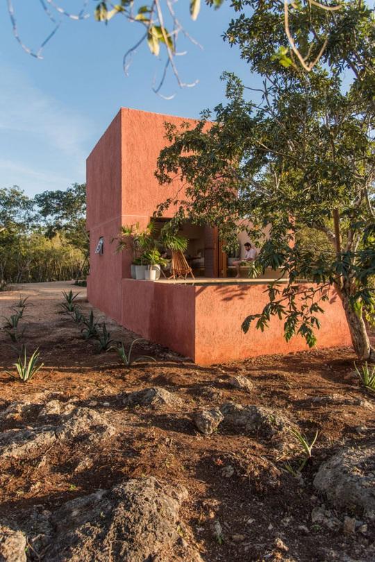Ngôi nhà hòa mình vào thiên nhiên hoang dã ở Mexico - Ảnh 12.