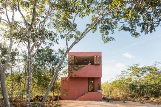 Ngôi nhà hòa mình vào thiên nhiên hoang dã ở Mexico - Ảnh 3.