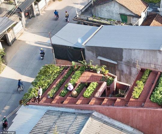 2 ngôi nhà ở Việt Nam thắng giải thưởng kiến trúc 2020 - Ảnh 1.