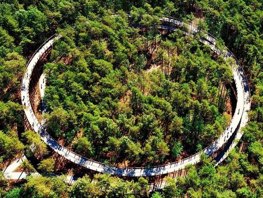 2 ngôi nhà ở Việt Nam thắng giải thưởng kiến trúc 2020 - Ảnh 4.