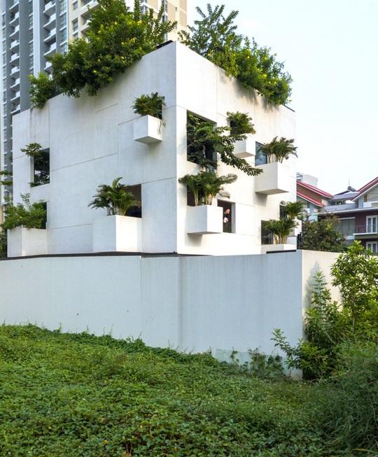 Ngôi nhà đẹp như bản tình ca với những ô vuông xanh ngẫu hứng - Ảnh 1.
