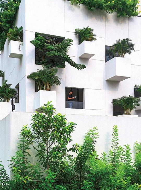 Ngôi nhà đẹp như bản tình ca với những ô vuông xanh ngẫu hứng - Ảnh 2.