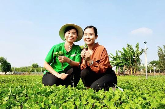 Đưa nông sản Việt sang trời Tây - Ảnh 1.