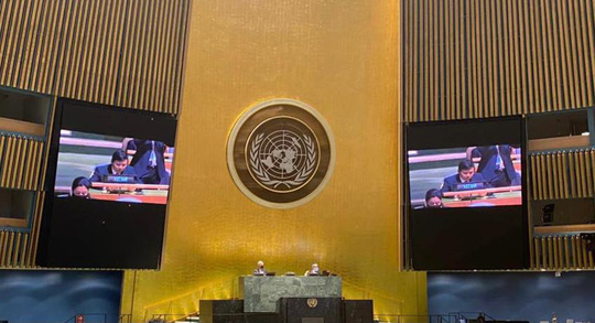 Liên Hiệp Quốc quyết thành lập Ngày Quốc tế chống dịch bệnh do Việt Nam chủ trì đề xuất - Ảnh 1.